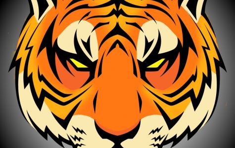 Tiger Cubs Migrate into Herrin High