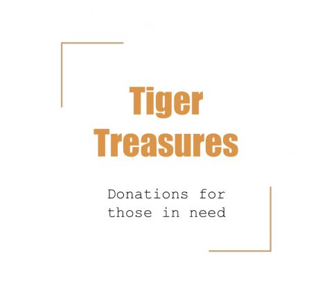 Herrin High welcomes a new club, Tiger Treasures, which was created by Elizabeth Waybright (11)