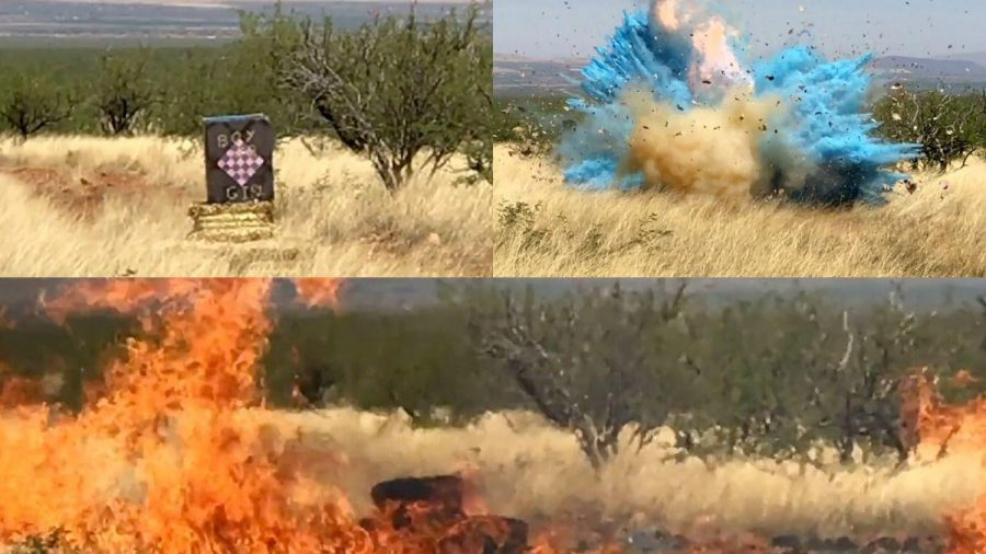 A+Gender+Reveal+gone+wrong+sparked+flames.